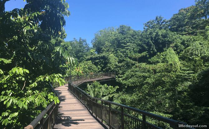 Canopy Walk, Kent Ridge Park