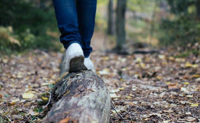 e walking trail 1
