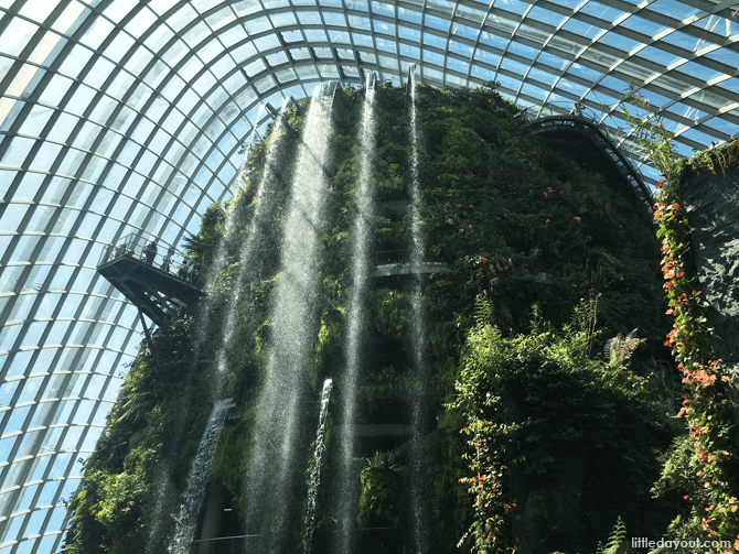 Waterfall at Cloud Forest, Gardens by the Bay