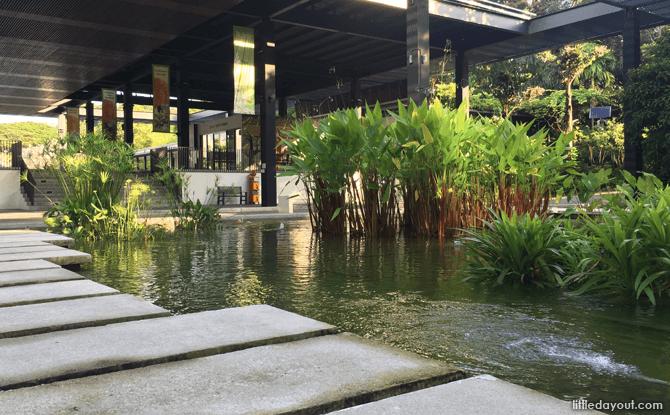 Water Garden, HortPark