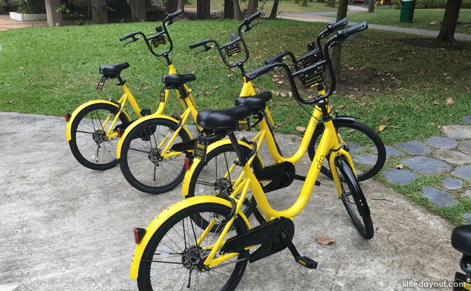 Ofo Bikes at West Coast Park, Singapore