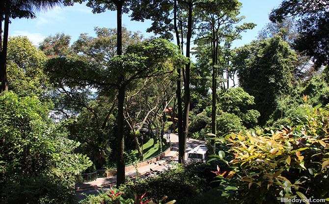Mount Faber Road