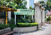 Hong Kong Zoological And Botanical Gardens: A Walk In The Park (With Animals!)