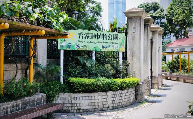 e01-Hong-Kong-Zoo