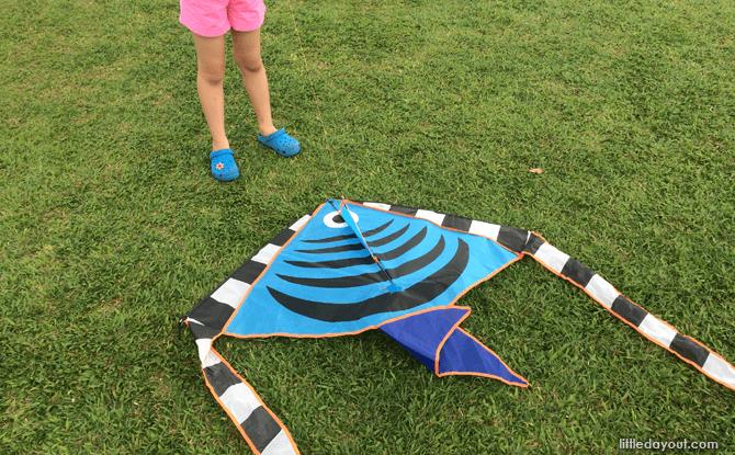e01-Kite-Flying