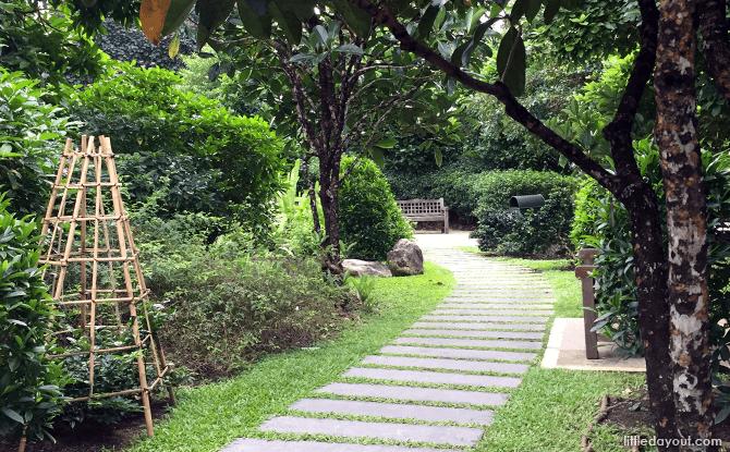 Inside the quaint Fragrant Garden at Singapore Botanic Gardens