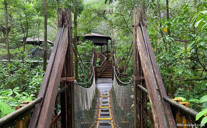 Jurong Bird Park African Treetops