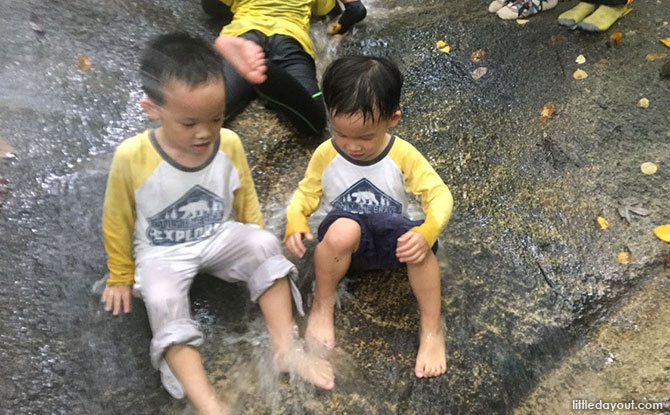 9 Forest Schools And Nature-Based Programmes In Singapore