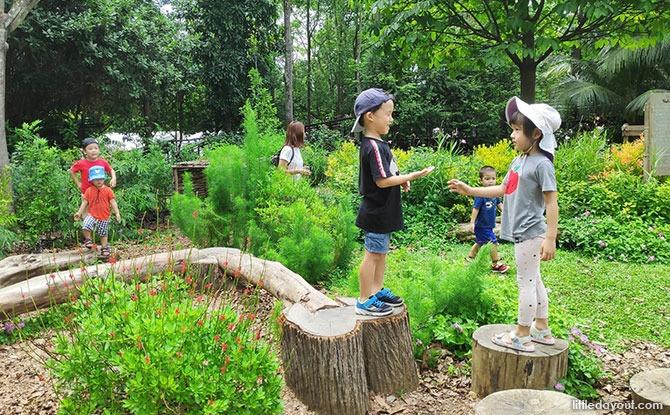 Jacob Ballas Children's Garden Sensory Garden