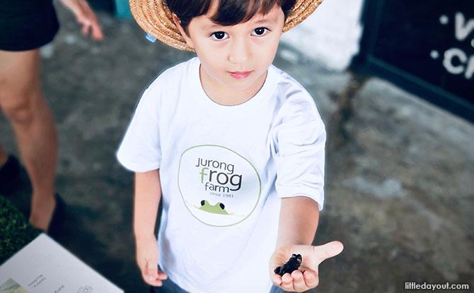 e01-jurong-frog-farm