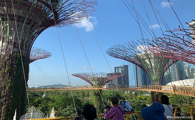OCBC Skyway At Gardens By The Bay: Elevated Walk Amongst The Supertrees