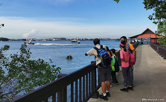 6 Lesser-Known Sights & Experiences You Might Miss On Pulau Ubin