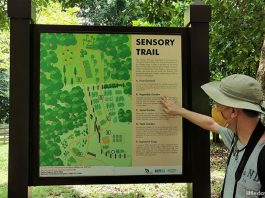 Pulau Ubin Sensory Trail: Revisiting The Island Past Through The Senses