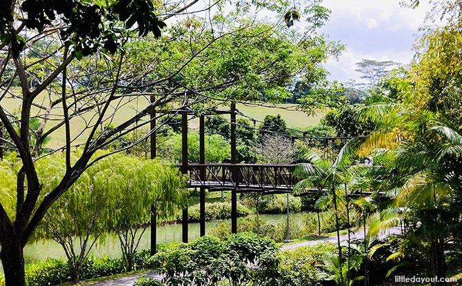 Punggol's Waterways