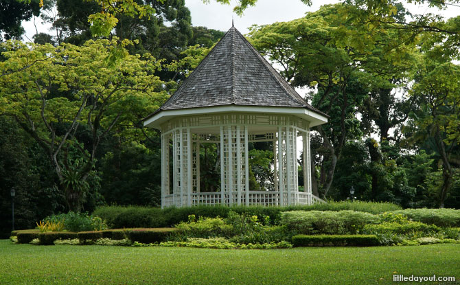 Singapore Botanic Gardens 15 Favourite Nature Spots Little Day Out
