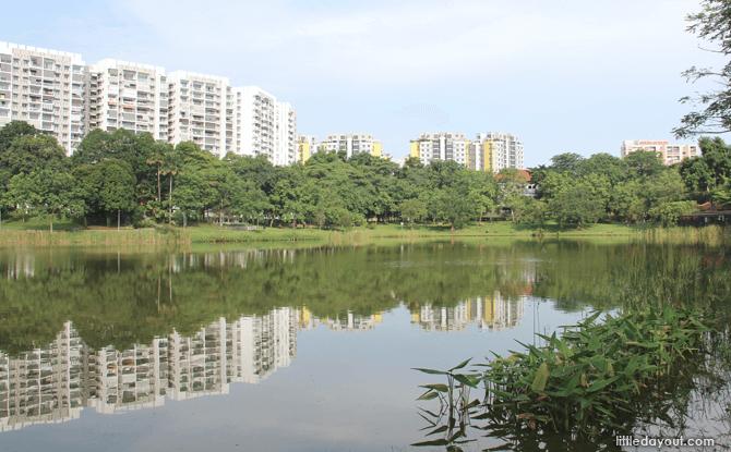 Punggol Park Lake