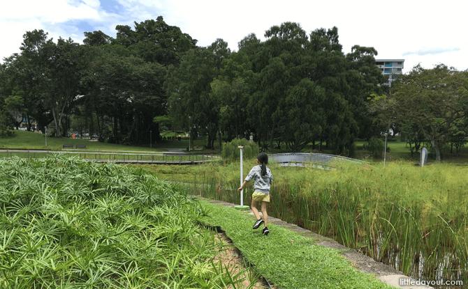 Exploring Bishan-Ang Mo Kio Park