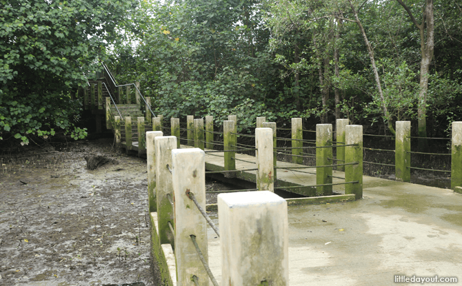 Boardwalk at Sungei Buloh Mudflats