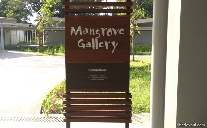 e02-MangroveGallery