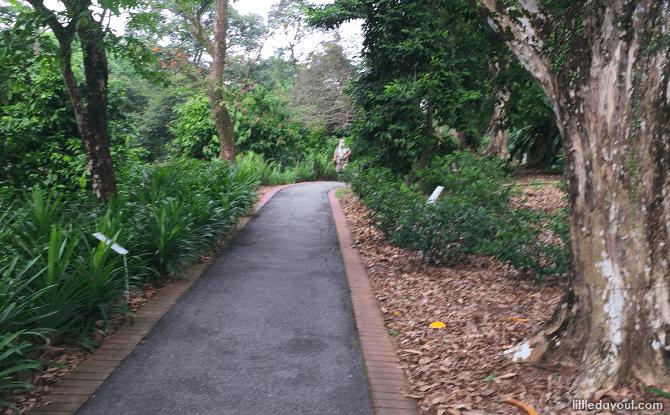 Red Brick Path, Singapore Botanic Gardens