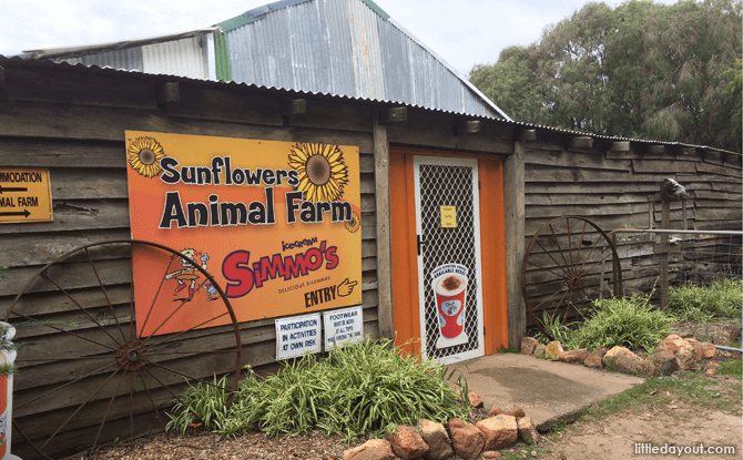 Sunflowers Animal Farm and Farmstay