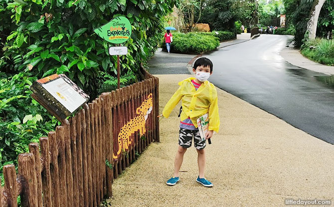 Singapore Zoo year-end 2020 activities