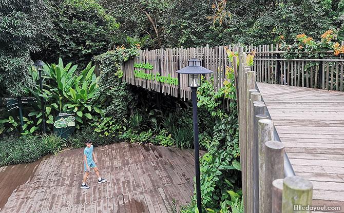 Visiting Jacob Ballas Children's Garden