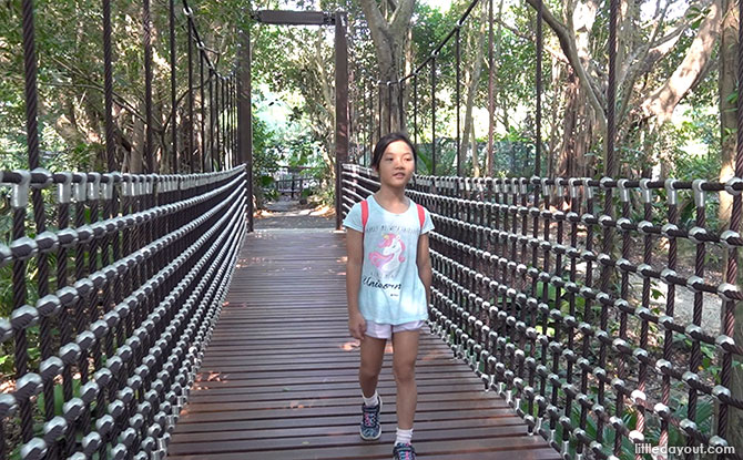 Rediscover Singapore: Suspension Bridges To Explore & Cross