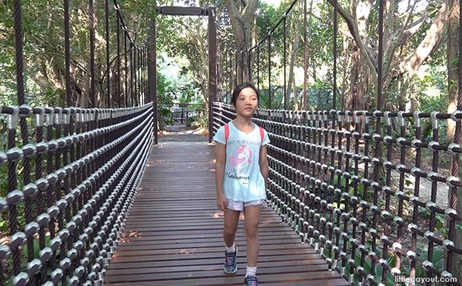 Rediscover Singapore: Suspension Bridges To Explore & Cross