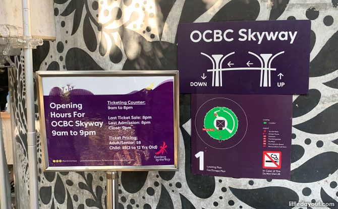Visiting the OCBC Skyway At Gardens By The Bay