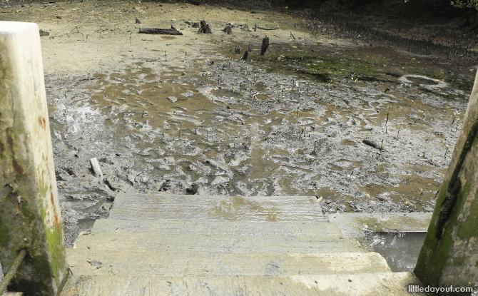 Stairway to Mud