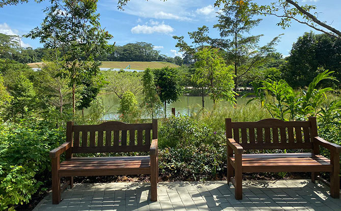 Therapeutic Garden at Punggol Waterway Park