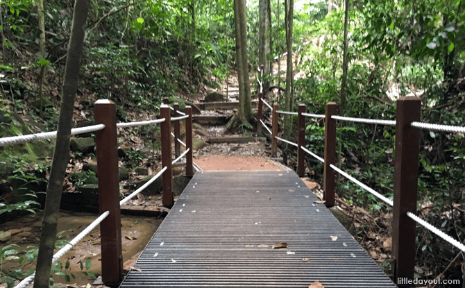 Enhanced paths at Bukit Timah Nature Reserve