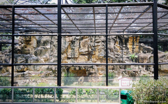 Hong Kong Zoo
