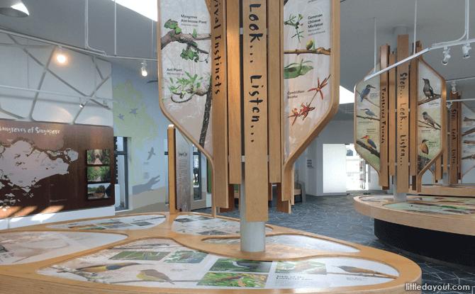 Mangrove Gallery