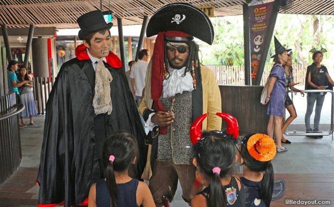 Vamp Pirate