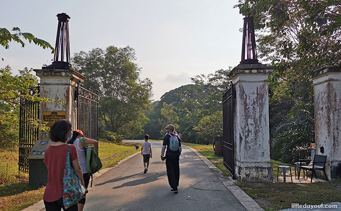 A Walk At Bukit Brown: A Fascinating Insight into History And Heritage Through Gravestones