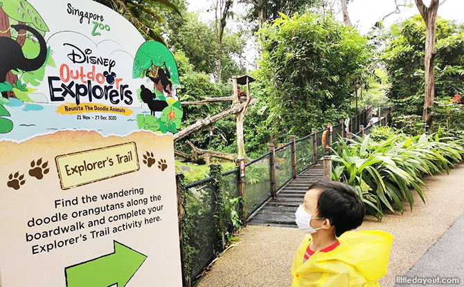 What to do at Singapore Zoo during the year-end holidays 2020