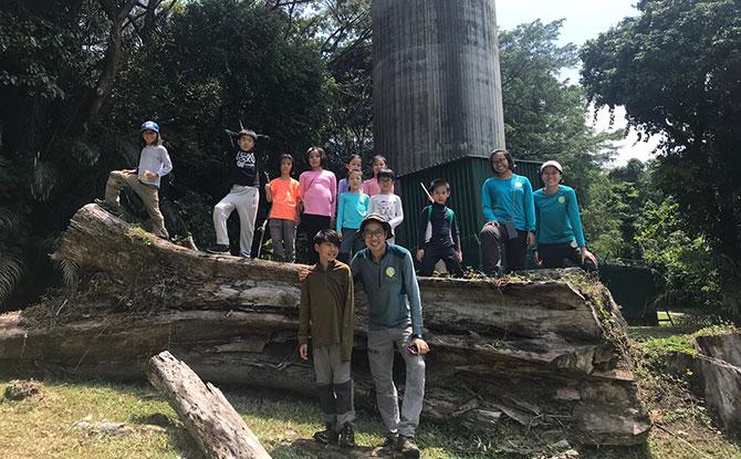 Nature Explorer School - Forest School in Singapore