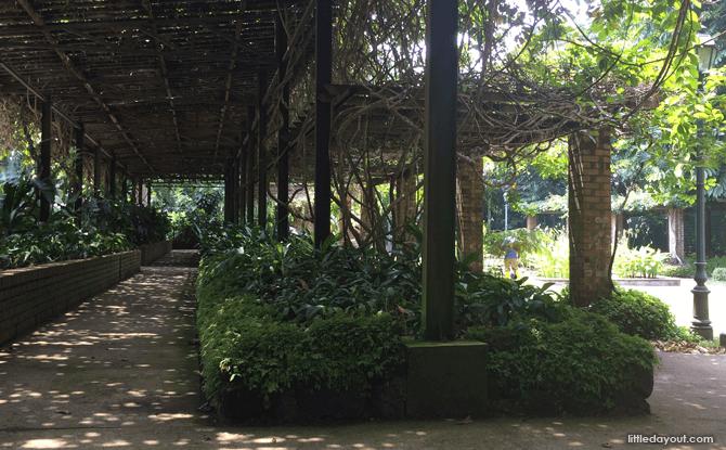 Plant House
