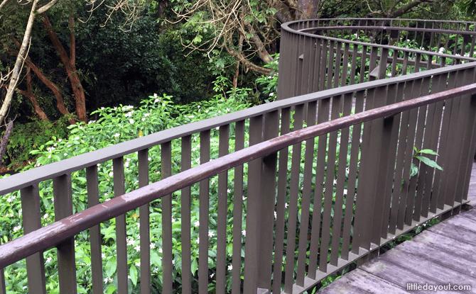 Boardwalk at Fragrant Garden