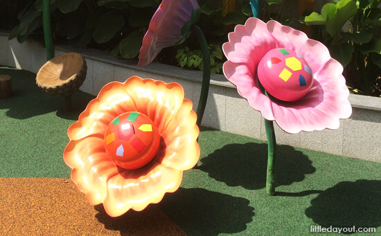 Flower Drums