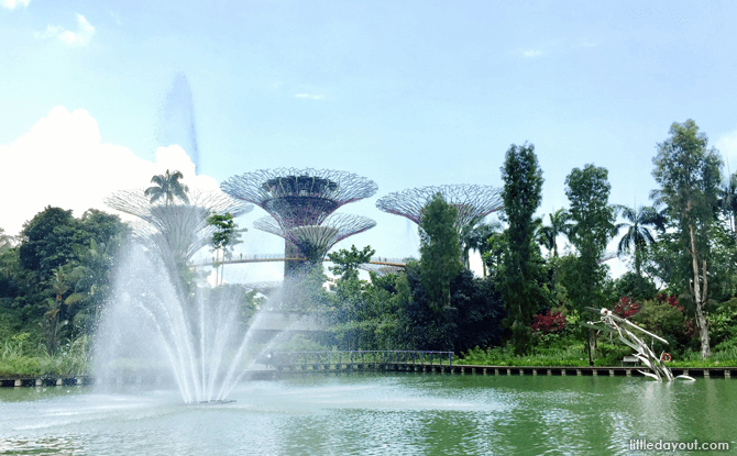 Dragonfly Lake, Gardens by the Bay