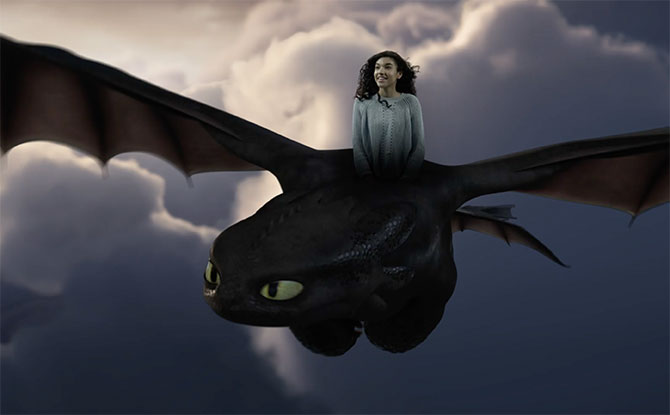 Fly With Toothless