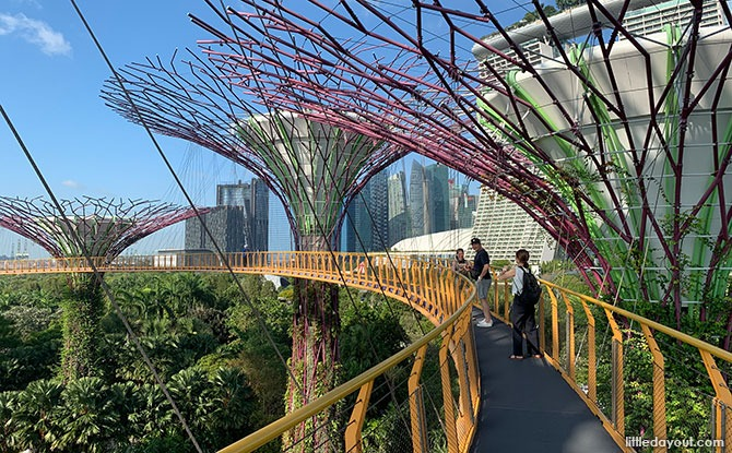 OCBC Skyway: Elevated Walk Amongst The Supertrees
