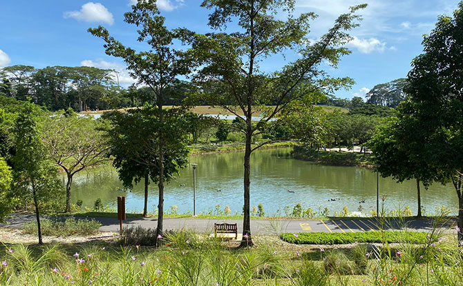 Therapeutic Garden at Punggol Waterway