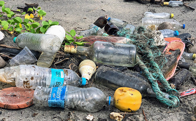 Trash - Take part in beach cleanups to help keep Singapore green