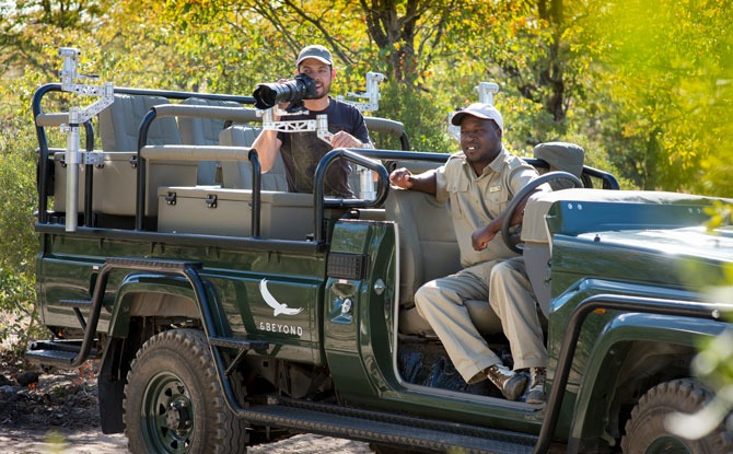 Go On A 'Live' Virtual Safari In South Africa With &BEYOND