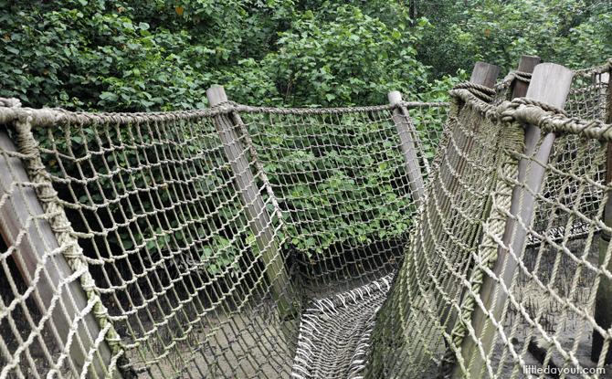 Rope Bridge at Sungei Buloh Mudflats