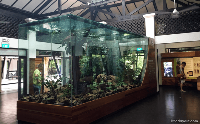 Bukit Timah Nature Reserve Visitor Centre Gallery